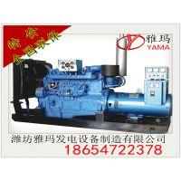 供应柴油发电机组 100kw YC6B155L-D21 全铜无刷全国联保 玉柴发电机