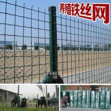 安平防锈养殖铁丝网围栏 密孔养殖铁丝网围栏价格/厂家