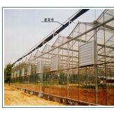生态农业必将是大势所趋,未来的新兴产业