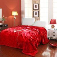 经典超柔毛毯拉舍尔毛毯200×230cm/8斤 秋冬保暖超柔加厚毯子