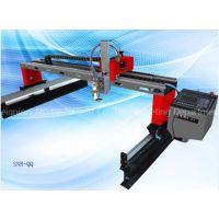 Cheap Metal Cutting Tools Gantry CNC Plasma Cutting Machine SNR-QQ