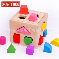十三孔智力盒 几何木质形状配对积木 儿童早教玩具1-2-3岁幼儿