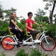 供应卡帕奇双人自行车 情侣双人单车 三人亲子自行车 景点观光自行车
