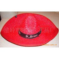 供应墨西哥草帽 (帽围黑色织带印刷LOGO促销)