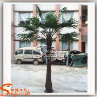 高质仿真树 造景仿真蒲葵 皇后葵远销中东室内外人造树
