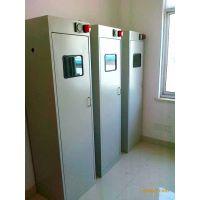 供应北京气瓶柜/顺义区气瓶存放柜/亦庄开发区气瓶柜|220V 报警 排风系统 钢 配套