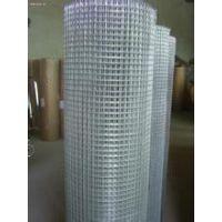 1.2米,1.5米,1.8米热镀锌电焊网,网孔25cm,厂家直销13784187308