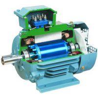 ABB电机样本大速电动机厂家直销配件现货供应