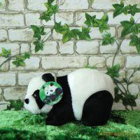 plush toy 软性玩具soft toy)毛绒玩具 熊猫填充玩具stuffed toy