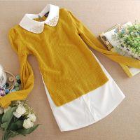 2014秋季新款女装打底衫 韩版中长款长袖打底衫女 长袖t恤女批发
