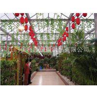 厂家直销生态餐厅墙壁玻璃,钢化玻璃天然餐厅,雨棚夹层玻璃
