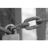 供应苏州链板链条 优质消毒机输送网链链杆式40
