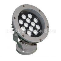 直销 全彩led投光灯 小功率户外亮化LED小射灯照树景观灯 12W24W