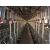 供应河南定制母猪定位栏 热镀锌材料 质量好 鼎盛