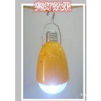 球泡灯、遥控LED灯、带应急功能照明灯,室内照明、室外照明