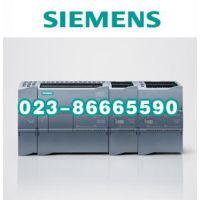 西门子S7-1200 电池板 6ES7297-0AX30-0XA0