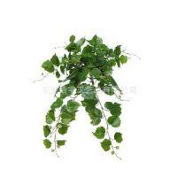 供应厂家直销仿真植物壁挂叶子  仿真植物 大量出售 高品质