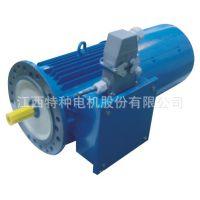 FBYS低电压大电流变桨电动机 分交流变频和永磁同步 可靠性高