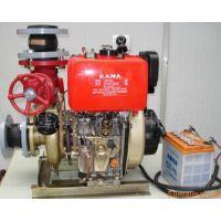 供应BJ9-B手抬式机动消防泵