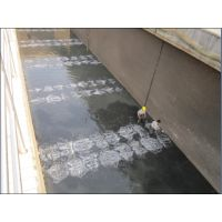 供应污水处理厂进口微孔曝气设备曝气装置