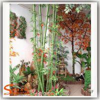 供应室内观赏竹子 环保材料保鲜仿真竹子