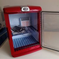 医药恒温箱、多功能便携车载保温箱冰箱 冷热型冰箱 冰箱 批发