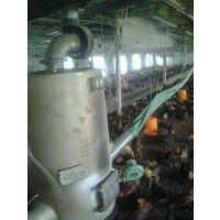 蛋鸡养殖取暖设备冬暖夏凉双重功效