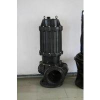 团购正品污水和污泥专用排污泵