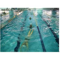 游泳池池水过滤设备 恒温游泳池设备有哪些 家庭游泳池造价