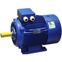 供应18.5KW高效电机 YE3系列电机(YE3-160L-2-18.5KW)