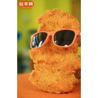 安徽合肥大脸鸡排加盟需要多少钱13103861839