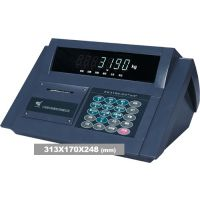 供应XK3190-D2+仪表