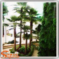 专业定做环保仿真棕榈树 人造蒲葵树 玻璃钢皇后葵