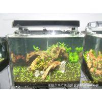 为深圳地区提供桌面亚克力水族箱 有机玻璃观赏型水族箱