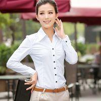 2014秋季新款韩版女式职业长袖衬衣 职场衬衣
