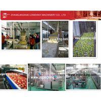 RCGF40-40-12 18000BPH 三合一果汁热灌装机 三合一热灌装设备
