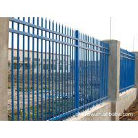 上海护栏网厂家制造学校机关铁艺金属组装护栏