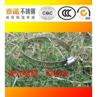 供应泰诺不锈钢喉箍,304材质保证,厂家直销,品质保证
