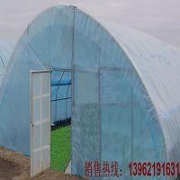 厂家直供苏州pe农用大棚膜 覆盖用塑料布 特殊规格可按需定做