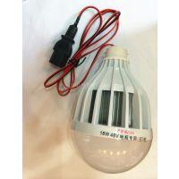 48v电动车电瓶夜市摆摊灯18W LED节能灯灯泡带线直流低压灯