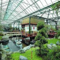 供应温室花房,生态餐厅顶棚材料专用卓尼牌8mm透明阳光板,防紫外线。