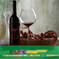 供应上海洋酒进口报关清关公司|红酒进口大国|红酒空运进口