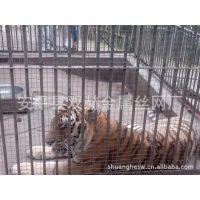 供应5mm钢筋网动物围栏 动物笼