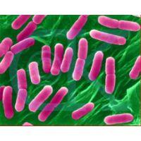 杀菌剂BK 工业杀菌剂 金属杀菌剂 三嗪类杀菌剂 切削液杀菌剂