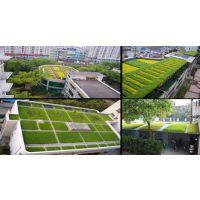 陕西屋顶绿化陕西安种植屋面防水工程