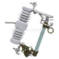 耐用户外高压跌落式熔断器 XRN2S&C/施恩禧电网产品S&C
