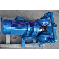 供应DBY-25电动隔膜泵