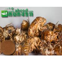 蝉蜕提取物生产厂家10:1植物提取物动物提取物