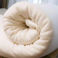【优质供应】冬天被子加厚 棉被 秋冬被芯 冬被子特价