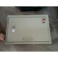 装蓄电池防爆箱-定做电池防爆箱壳体